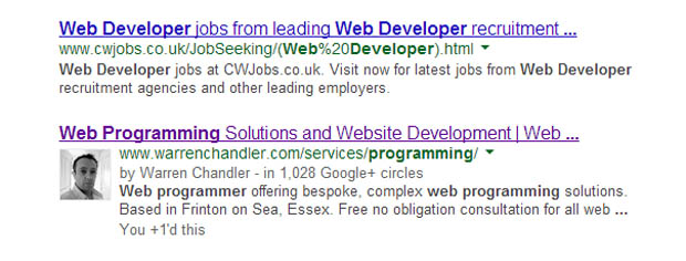 web-programmer-search-results